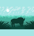 landscape with wild bizon on field vector image