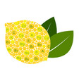 lemon benefits vitamins and minerals of lemon vector image vector image