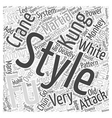 The Many Styles Of Kung Fu Word Cloud Concept vector image vector image