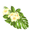 tropical flower bouquet for your summer holidays vector image vector image