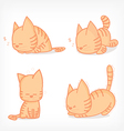 cat sleep vector image