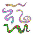 collection decorative colorful ethnic snakes vector image vector image