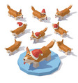 corgi in a christmas hat vector image vector image