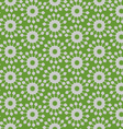 Flower striped vector image vector image