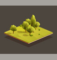 isometric small woods area vector image