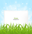 Summer Card with Green Grass and Paper Sheet vector image vector image
