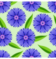 Summer seamless pattern with cornflowers vector image