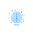 a brain image a person vector image