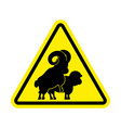 attention sheep sex warning ram intercourse vector image vector image