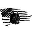 black silhouette head pitbull with american vector image vector image
