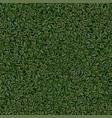 seamless texture of green tea vector image vector image