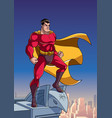 superhero watching city from roof vector image vector image