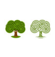 tree with green leaves symbol environment nature vector image