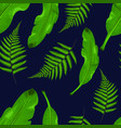 tropical leaves on blue navy background baner vector image