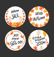 autumn badges collection vector image