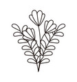 autumn flowers foliage leaves isolated icon line vector image