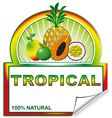Tropical label for marketplace vector image vector image