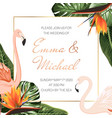 wedding event invitation card template tropical vector image vector image