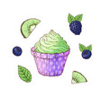 a set of cupcake blackberries blueberries kiwi vector image