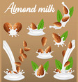 almond nut in milk splash realistic vector image