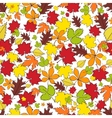 Autumn leaves Seamless background vector image