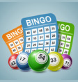 bingo ball and tickets background vector image vector image