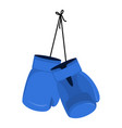hanging blue boxing gloves accessory for boxer vector image vector image