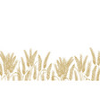 horizontal background with wheat ears at bottom