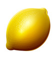 lemon icon isolated on white background vector image vector image