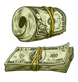 money bundle isolated vector image