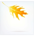 Autumn card with falling leaf on white background vector image vector image