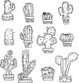 cactus black and white vector image vector image