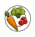 carrot broccoli and tomatoes inside of plate vector image vector image