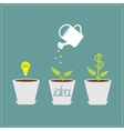 Financial growth concept Idea bulb seed watering vector image vector image