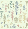 seamless pattern with doodle herbs and flowers vector image vector image