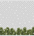 christmas border with pine tree branches vector image