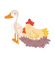 farm animals cartoon goose and hen in nest cartoon vector image