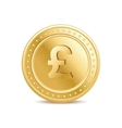 Golden pound sterling coin on the white background vector image vector image