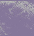 grunge violet texture vector image vector image