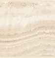 light marble roman classic travertine textured vector image