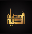 luxury design ramadan kareem vector image