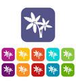 palma icons set vector image vector image