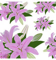 seamless repeat pattern with lily flowers and vector image