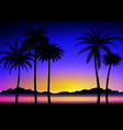 silhouette palms on tropical sunset vector image