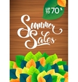 Summer sale leaves promotoin poster Card template vector image