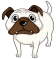 A white bulldog vector image