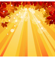 Autumn background with space for text vector image vector image