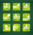 bio product organic leaves emblems stickers vector image vector image