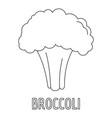 broccoli icon outline style vector image
