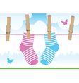 clothespins socks vector image